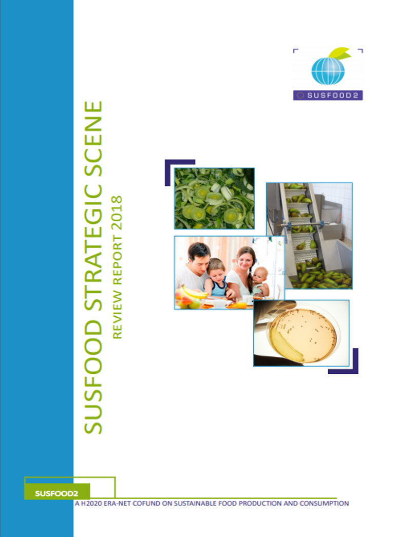 SUSFOOD strategic scene 2018